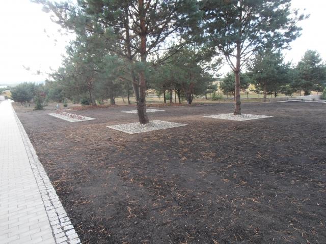 ogrody 2015 wrzesień 077