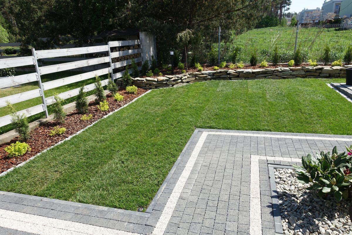ogród 1 007