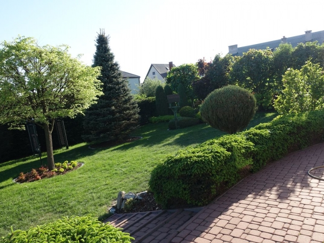 ogród 2 018