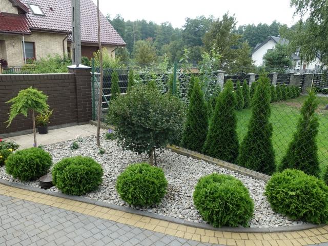 ogród na koniec lata 012
