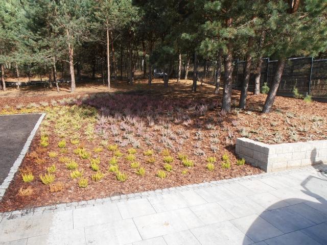 ogrody 2015 wrzesień 058
