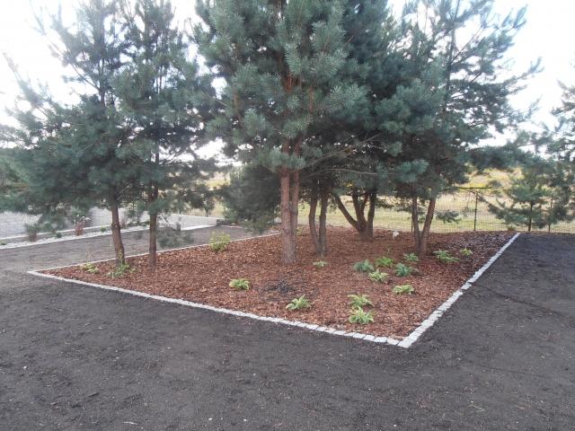 ogrody 2015 wrzesień 065
