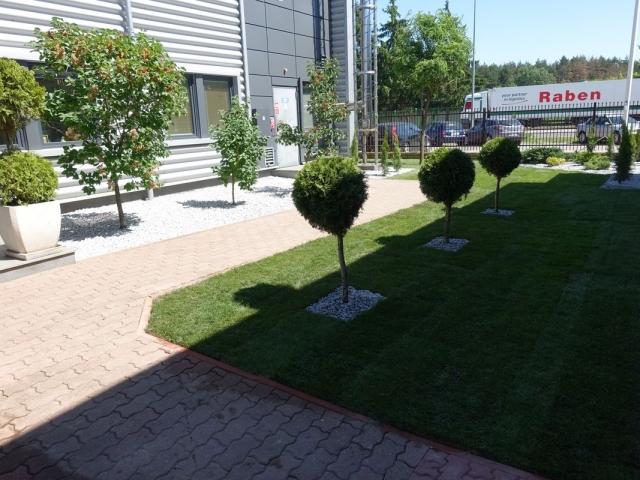 zieleń przy firmie 006