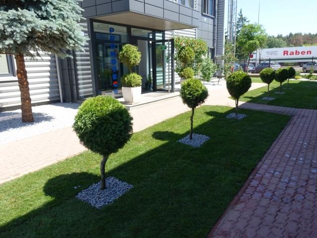 zieleń przy firmie 009